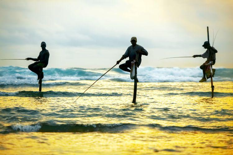 Pêcheurs traditionnels à Weligama